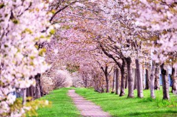 春の「基礎化学」始まります。の画像